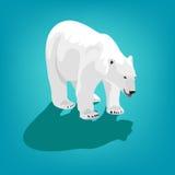 Illustration of polar bear on blue background. Eps 10 Royalty Free Stock Image