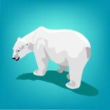 Illustration of polar bear on blue background. Eps 10 Stock Image