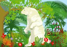 Global warming illustration with polar bear in jungle Royalty Free Stock Image