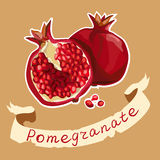 Illustration of pomegranate and its half Royalty Free Stock Photography