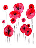 Illustration of poppies flowers in a fantastic form Royalty Free Stock Images