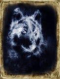 Illustration Portrait of a Wolf, crackle background. vintage picture. stock illustration