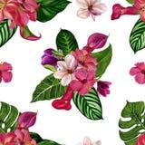 Illustration pour aquarelle peinte à la main Modèle tropical sans couture avec les fleurs exotiques photographie stock libre de droits