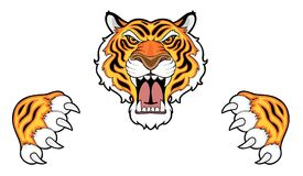 Tiger head and claws Stock Photography