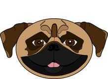 Illustration of a pug`s head vector illustration