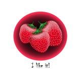 Illustration réaliste de fraise Illustration Stock