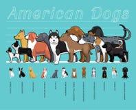 Illustration réglée de vecteur de bande dessinée de chiens de comparaison américaine de taille illustration de vecteur