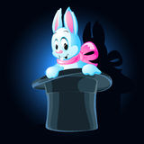 Illustration of a rabbit Royalty Free Stock Photos