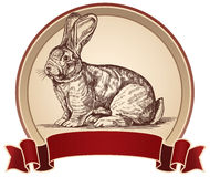 Illustration of a rabbit in a frame. Royalty Free Stock Photography