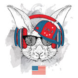 Illustration of rabbit in the glasses, headphones and in hip-hop hat with print of USA. Vector illustration. Stock Photo