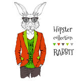Illustration of rabbit hipster dressed up in jacket, pants and sweater. Vector illustration Royalty Free Stock Images