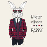 Illustration of rabbit hipster dressed up in jacket, pants and sweater. Vector illustration Royalty Free Stock Photos