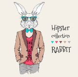 Illustration of rabbit hipster dressed up in jacket, pants and sweater. Vector illustration Stock Photos