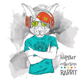 Illustration of rabbit hipster dressed up in t-shirt, pants and  in the glasses and headphones. Vector illustration. Royalty Free Stock Images
