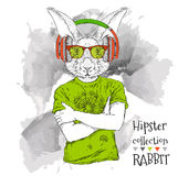 Illustration of rabbit hipster dressed up in t-shirt, pants and  in the glasses and headphones. Vector illustration. Royalty Free Stock Photography