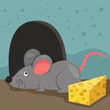 Illustration of rat and home Stock Images