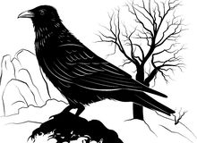 Illustration with Raven on a rock on a background Stock Photos