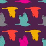 Illustration with raven in vector. Funny cartoon background. Seamless pattern with birds.  Stock Photography