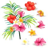 Illustration of a realistic style branch of a tropical palm tree with hibiscus flowers Stock Photo