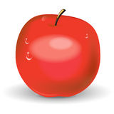 Illustration of red apple Royalty Free Stock Images