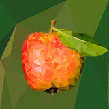 Illustration of a red apple with  green leaf in the style  low poly Royalty Free Stock Photo