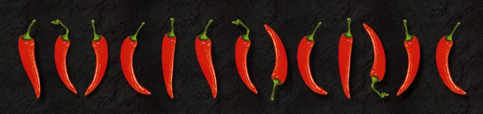 Illustration of red chili peppers on slate backgroundpanoramic format royalty free stock images