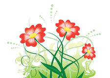 Illustration with red flowers - vector. Vector illustration with red flowers stock illustration