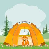 Red fox in the tent. Illustration of red fox in the tent Royalty Free Stock Photos
