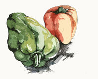 Illustration of Red and Green Peppers Royalty Free Stock Photo
