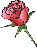 Illustration red rose on a white background. Stock Photo