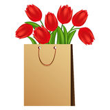 Illustration of red tulips. Stock Images