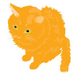 Illustration redhead cat Stock Photo