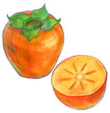 Illustration of ripe persimmon fruit Royalty Free Stock Photography