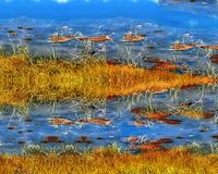 Illustration of a river bank, an unusual view of water, grass on water. stock illustration