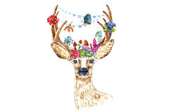 Illustration of roe deer with flowers Royalty Free Stock Image