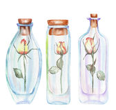 Illustration romantic and fairytale watercolor bottles with roses inside Royalty Free Stock Photography