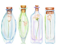 Illustration romantic and fairytale watercolor bottles with tender flowers inside Stock Images