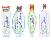 Illustration romantic and fairytale watercolor bottles with tender lavender flowers inside Royalty Free Stock Photo