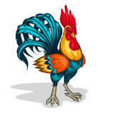 Illustration of a rooster. Color illustration of a rooster standing half-turned. Cock symbol 2017 year Royalty Free Stock Photography