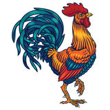 Illustration of a rooster Royalty Free Stock Photography