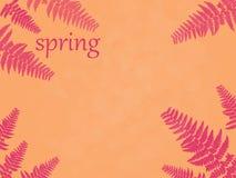 Illustration rosa filialer av en ormbunke på en gul bakgrund, vårbokstäver, modell, ställe för inskrift arkivbilder