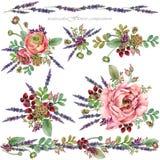 Illustration rose de pivoine composition en fleur d'aquarelle pour des félicitations Photos libres de droits