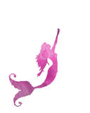 Illustration rose de sirène Photographie stock