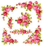 The illustration of rose. I drew a beautiful rose Stock Image