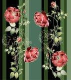 Illustration rose. Stock Photo