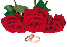 Illustration of Roses and rings Stock Image