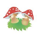 Illustration rouge de champignon d'amanite Photo stock