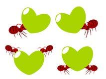 Illustration rouge de travail d'équipe de fourmis Image libre de droits