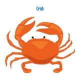 Illustration rouge de vecteur de crabe Photographie stock libre de droits