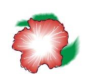 Illustration rouge de vecteur de fleur de ketmie Photographie stock libre de droits
